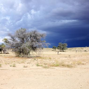 Unter südafrikanischer Sonne arbeiten
