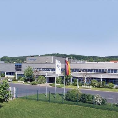 Hirschvogel in Eisenach