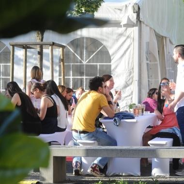 Hays Sommerfest