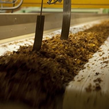 Tabak in der Produktion