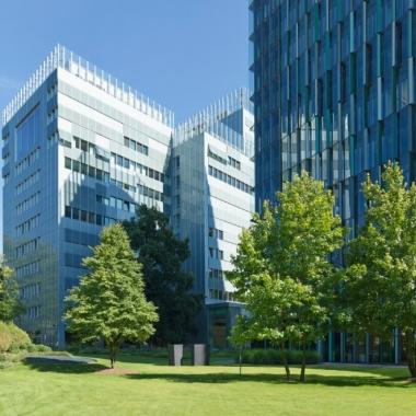 Grünanlagen in Frankfurt (Quelle: KfW-Bildarchiv / Fotograf: Rüdiger Nehmzow)