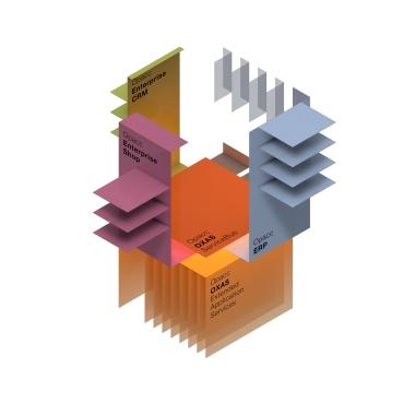 Extended Enterprise Software Architektur mit OpaccOXAS, OpaccERP, OpaccEnterpriseShop und OpaccEnterpriseCRM