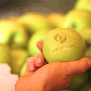 Äpfel mit Logo