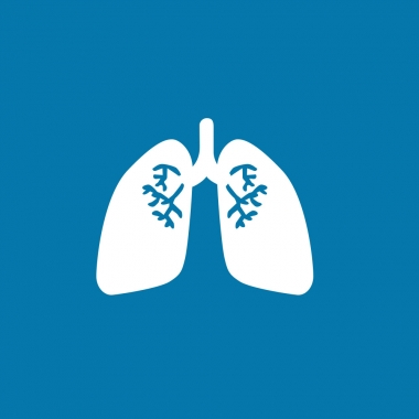Therapiegebiet Atemwege. Mehr unter: http://www.chiesi.de/atemwege