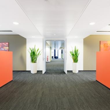 Die modernen Büroräumlichkeiten sind im Corporate Design gestaltet...