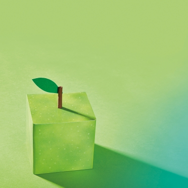 Nachhaltig: aus Prinzip - Nachhaltigkeit ist bei apm kein Modewort, sondern wir leben und arbeiten schon seit vielen Jahren in diesem Sinne.