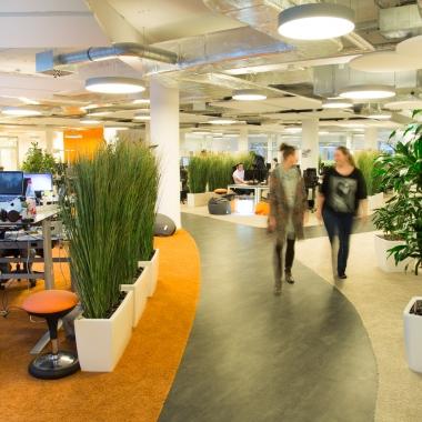 Viele Grünpflanzen und ausreichend Platz im Open Space