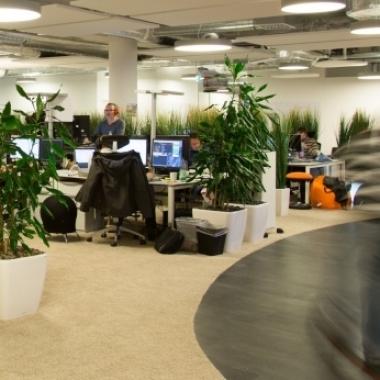Einblick in unser schönes und modernes Office im Luisenforum in Wiesbaden