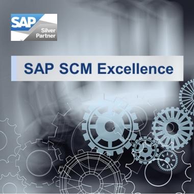 SAP SCM Excellence. Geschäftsprozesse analysieren und effizient gestalten. Ihre Wettbewerbsfähigkeit verbessern.