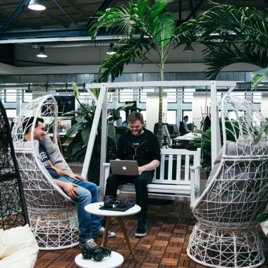 Unser Jungle im Tech Office