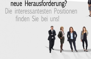 SCHULMEISTER Management Consulting
