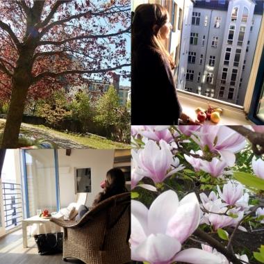 Die DBS GmbH hat ihren Firmensitz in einem ruhigen, schönen Berliner Gewerbehof.