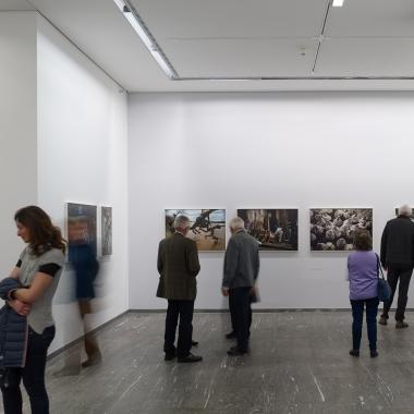 INNSITU- Foto Kunst Stadtforum