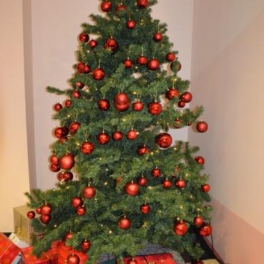 Unser jährlicher Weihnachtsbaum.