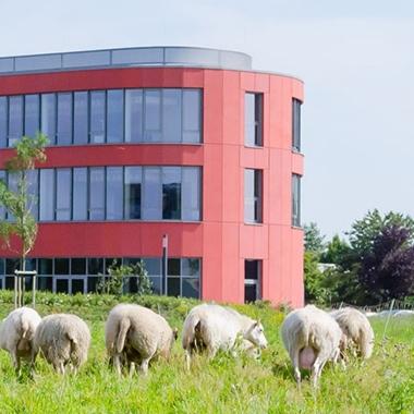 d.velop campus in Gescher