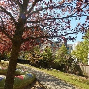 Vom Kurt Hiller Park aus kann man einen Blick auf den Gewerbehof werfen, denn der kleine Park befindet sich direkt nebenan.