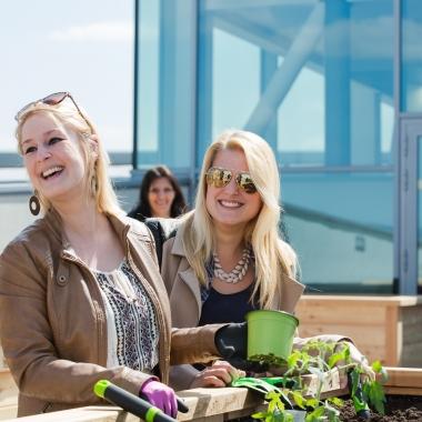 Magenta Telekom Als Arbeitgeber Gehalt Karriere Benefits Kununu
