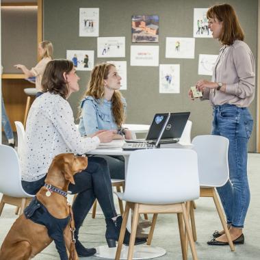 In unserem offenen Büro in Verden lent man schnell neue Kolleginnen und Kollegen - sowie ihre Vierbeiner - kennen