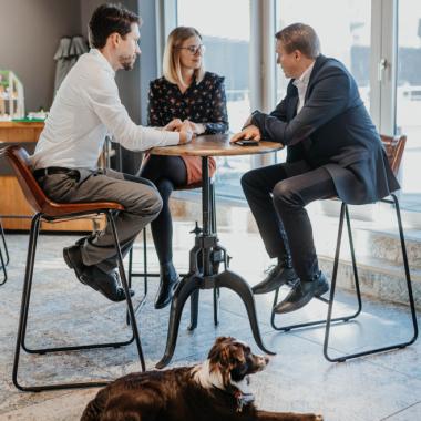 Büro-Hunde sind bei uns willkommen, wenn sie stubenrein und lieb sind ;)