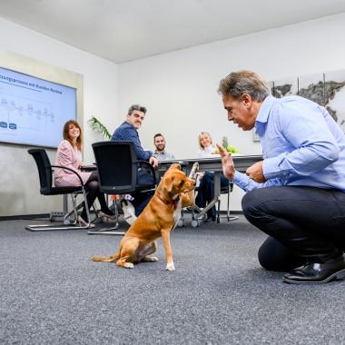 Our ACT Team   Bürohund