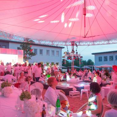 Gemeinsam Erfolge feiern: Unser jährliches Sommerfest
