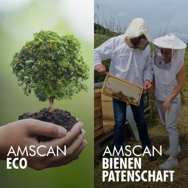 2019 wurde AMSCAN-ECO in das Leben gerufen. Heute haben wir dadurch unsere Bienenpatenschaft.