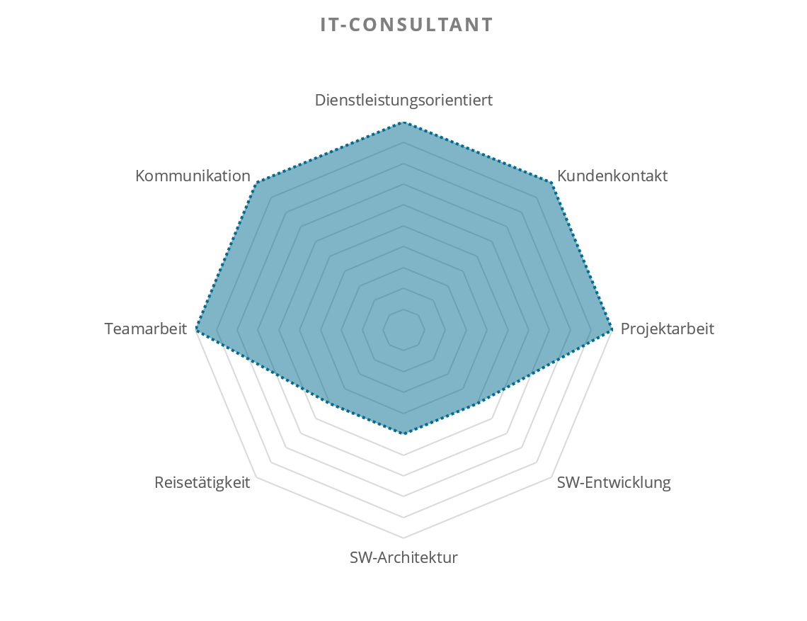 Technical IT Consultant