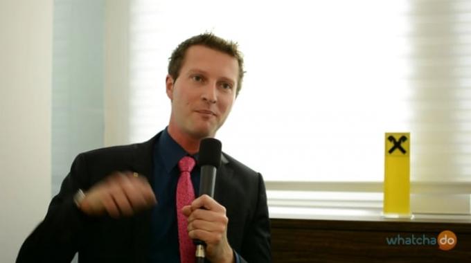 Hannes Hettegger, Revisor