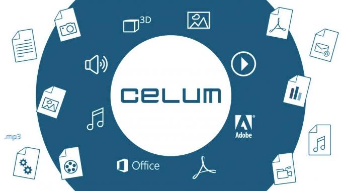 Was Wir Tun - CELUM einfach erklärt