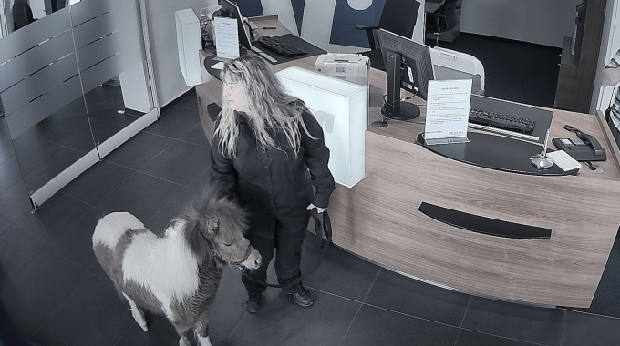 Kommt ein Pferd in eine Bank | easyCredit erfüllt Herzenswünsche