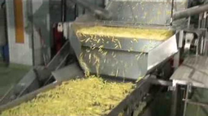 Verarbeitung von Kartoffeln bei der BINA in Bischofszell