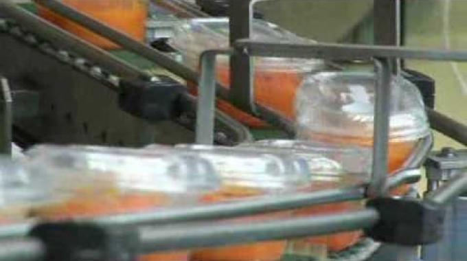 Herstellung frischer Salate bei der BINA in Bischofszell