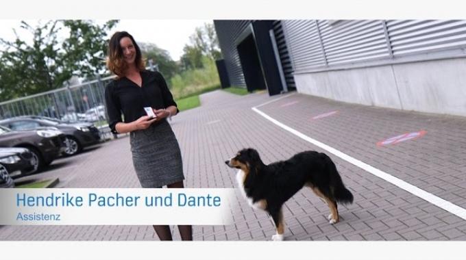 Hendrike Pacher - Regionsassistenz