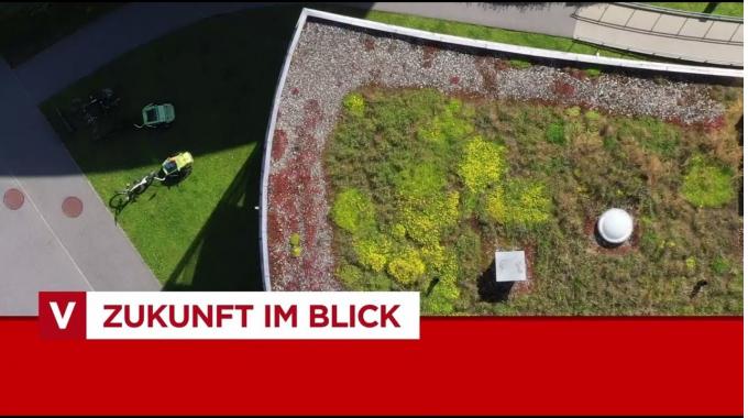 Zukunft im Blick: Grüne Dächer