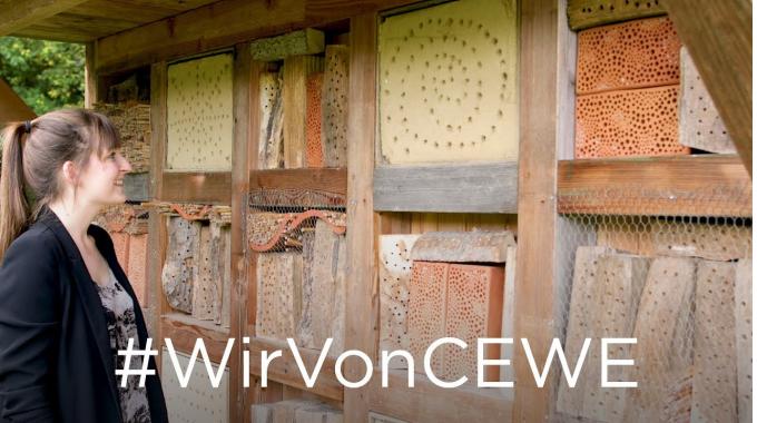 #WirVonCEWE – Nachhaltigkeitsmanagerin Fenna erzählt von ihrem Arbeitsalltag
