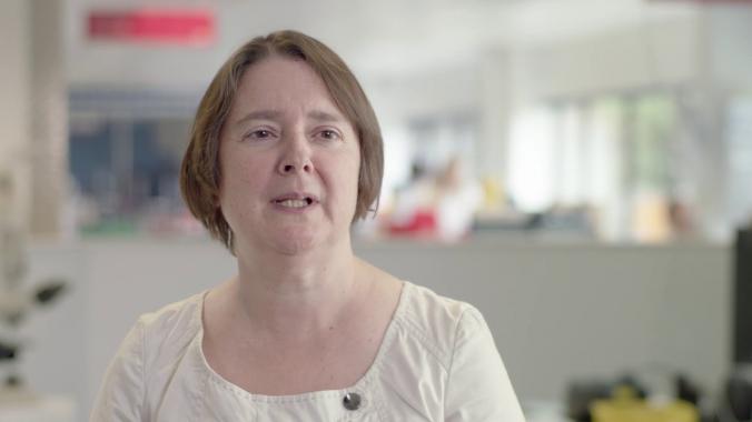 Idexx reference laboratories' global digital pathology network