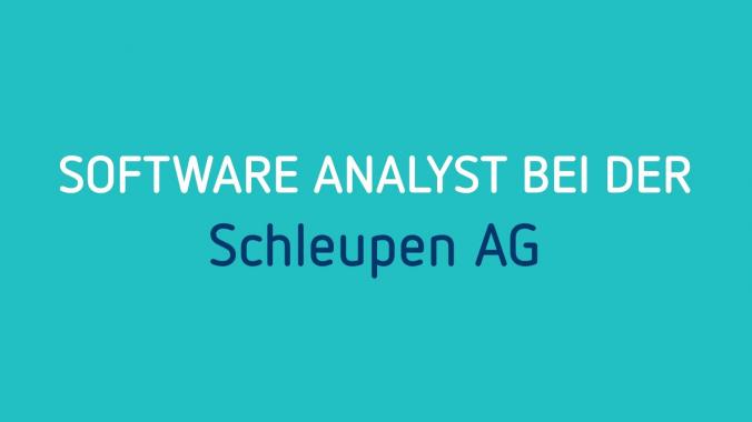 Schleupen-Jobprofil Software Analyst